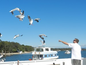 Feeding_The_Gulls_With_Coomera_Houseboats