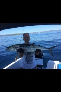 1 Mackerel Fraser Macquire Palm Beach Reef